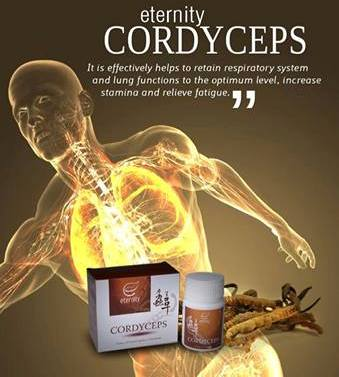 cordyceps supplement for health