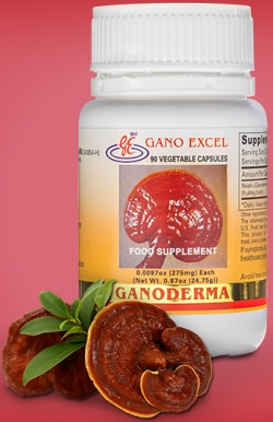 ganoderma supplement